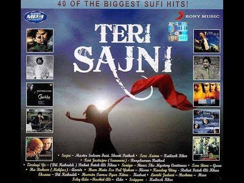 Sajni Song Download Master Saleem (From Teri Sajni )