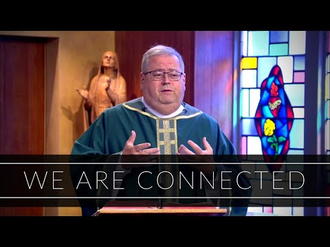 We Are Connected | Homily: Father John Sheridan