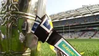 2014 GAA All-Ireland Hurling Finals: Were You There?