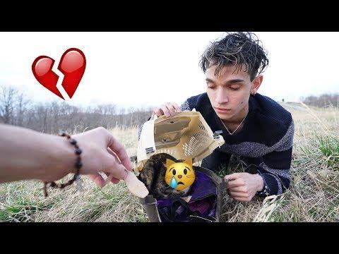 WE RESCUED A LOST KITTEN!
