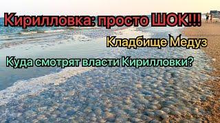 Кириловка - 2021Кладбище медуз это надо видетьКуда смотрят властиПробки на дорогах до 27.07.21