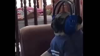 Когда слушаешь свою любимую музыку