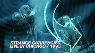 R.E.M. - Strange Currencies (Live in Chicago / 1995 Monster Tour)