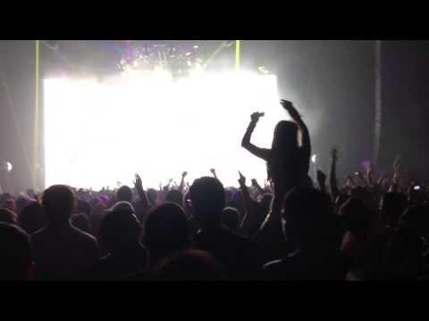 Bassnectar Concert Bass Head