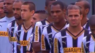 O Rebaixamento Do Botafogo Em 2014