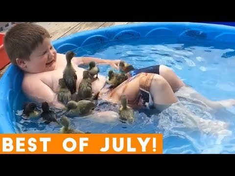 Ultimate Animal Reactions & Bloopers of July 2018 Funny Pet Videos