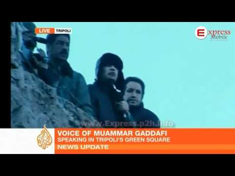 Gaddafi addresses Tripoli crowd