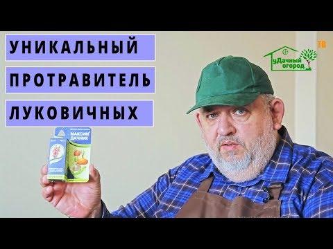 Эксперты рекомендуют средство Максим Дачник 👍