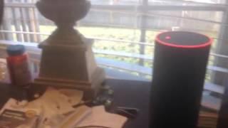 Amazon Echo VS Amazon Echo Dot