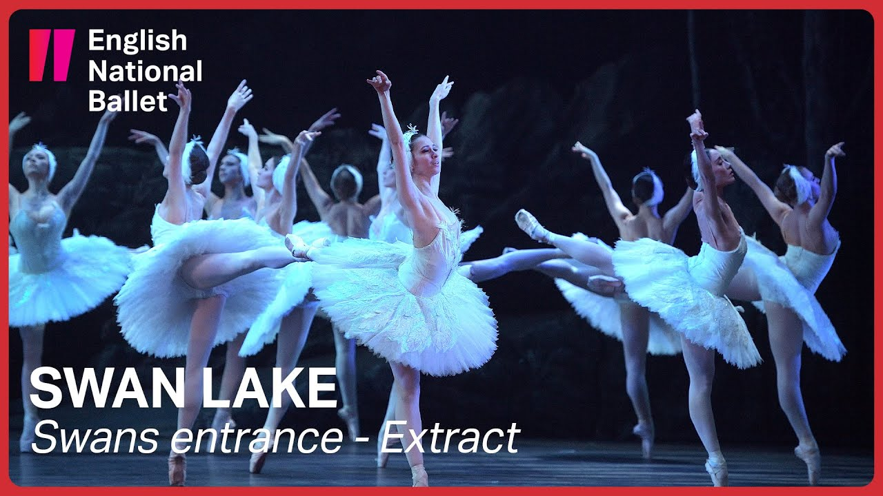 Swan Lake: Swans entrance (extract) | English National ...