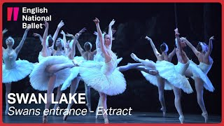 Swan Lake: Swans entrance (Act II) | English National Ballet