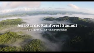 Highlights from the 2016 Asia-Pacific Rainforest Summit