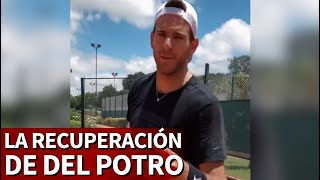 Del Potro, feliz al volver a una pista de tenis | Diario AS