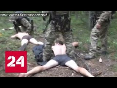 Смотреть Черные старатели наладили добычу золота в лесной глуши - Россия 24 онлайн