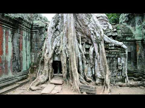 Temples of Angkor Part III: Ta Prohm; Cambodia