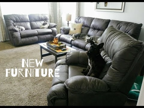 Schnauzer Approved Furniture | Dog Mom Life