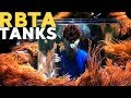 32 RBTAs Tank + Sea World RBTA tank!!