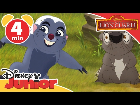 Magical Moments | The Lion Guard: Bunga The Immune Honey Badger  | Disney Junior UK