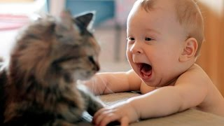 Дети и кошки приколы Funny cats and babies