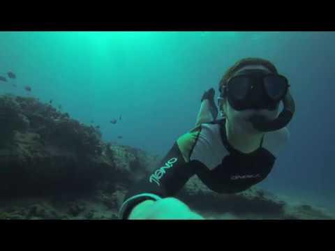 Freedive Oahu