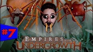 Empires of the Undergrowth - GUERRA DE COLÔNIAS!!! #7 (Gameplay / PC / PTBR) HD