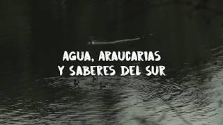 Anfitriones y Panoramas en Curarrehue | Fundación Sendero de Chile