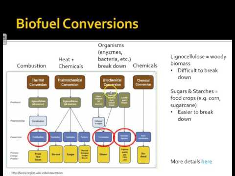 NRG 154 - Alternative Energy Technologies: Bioenergy
