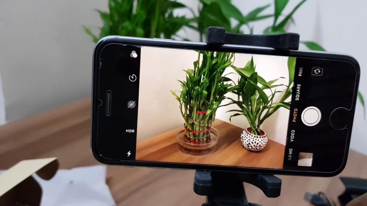 1bb4012f318c58 ZAAP Nustar-6 Selfie/Mobile Tripod stick with bluetooth remote ...