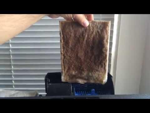 DIY Fish Tank Filter