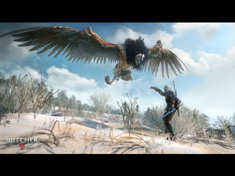The Witcher 3  Wild Hunt Magical Signs Guide