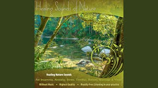 Gentle Ocean Wave Sounds (Nature Sounds Online of Ocean Wave Sounds) (Ocean Sounds MP3 of...