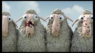 Câu chuyện về 2 người chủ và những chú cừu thông minh!!
