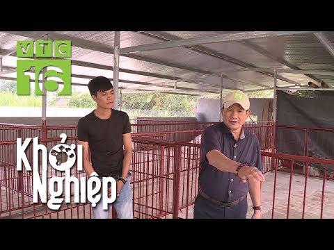 20 tuổi chi 160 triệu xây chuồng nuôi lợn rừng   Khởi nghiệp 591   VTC16