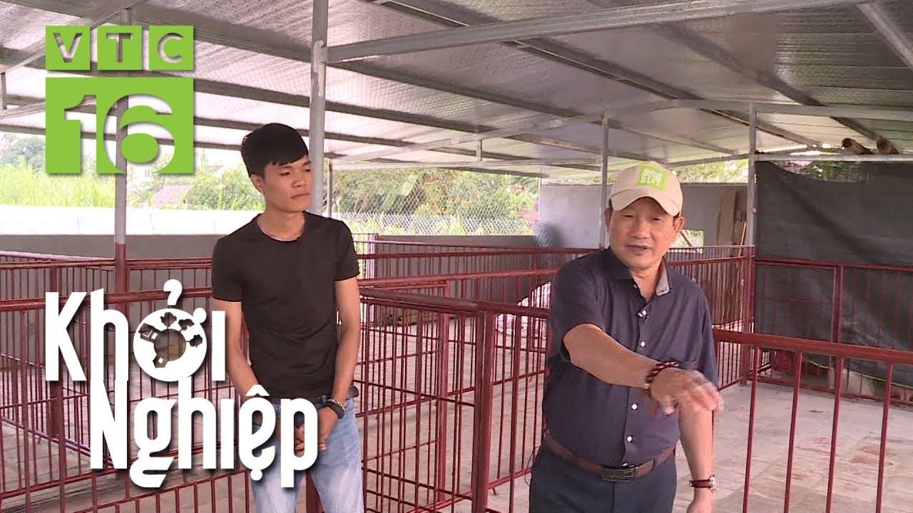 20 tuổi chi 160 triệu xây chuồng nuôi lợn rừng | Khởi nghiệp 591 | VTC16