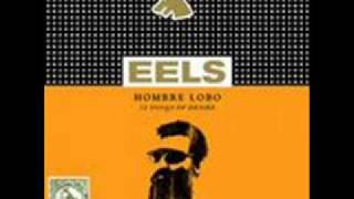 Eels - That Look You Give That Guy