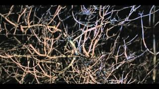 Sandy Rivera feat. Alisa Fedele - Avenue [Official Music Video]
