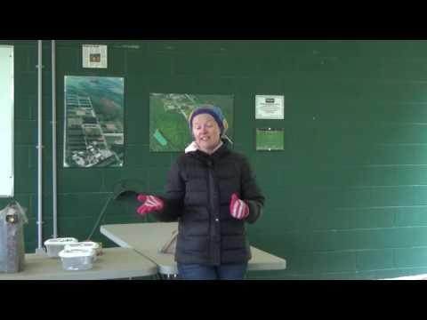Amanda McNulty   Autism Ontario Barrie