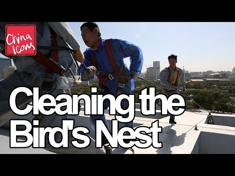 Cleaning the Bird's Nest | A China Icons Video