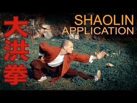 Shaolin Da Hong Quan Practical Application