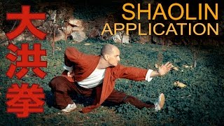 Shaolin Da Hong Quan Practical Application