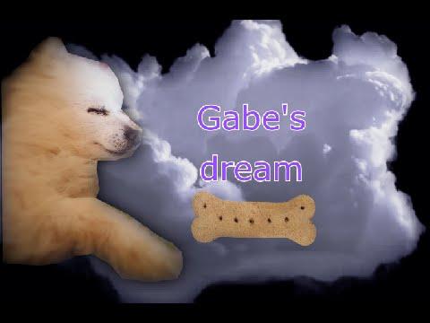 Gabe's dream