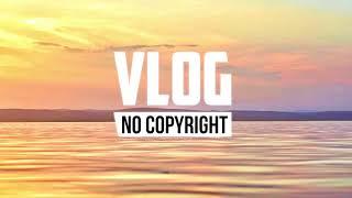 Dizaro - Crazy (Vlog No Copyright Music)