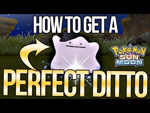 How to Catch a PERFECT Ditto - MAX IVs! - in Sun & Moon!