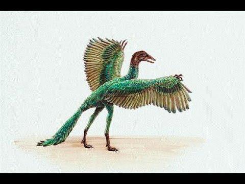 Archaeopteryx | Enciclopedia sobre Dinosaurios