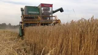 Жнива 2016 з Volvo S830, Harvesting in Ukraine, Zniwa 2016