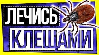 ЛЕЧЕНИЕ КЛЕЩАМИ / ФРИКИ В МЕДИЦИНЕ