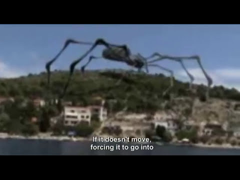 Giant mutated spider sighted in Croatia!