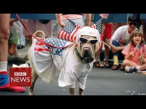What do Americans really think about US on Independence Day - BBC News