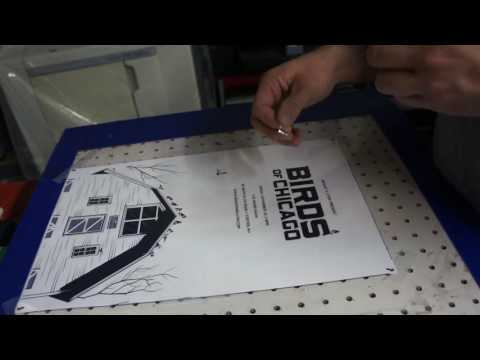 Screen Printing Birds Of Chicago Posters By Hand In Dover New Hampshire