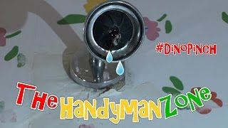 Replace Washer Fix Leaky Shower - Tub - 2 Handle ft.  Dino